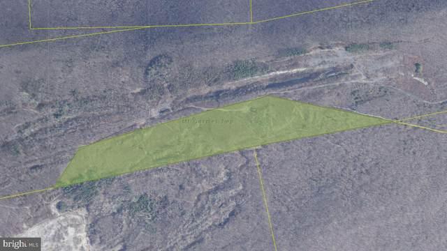 0 Route 54, MOUNT CARMEL, PA 17851 (#PANU101358) :: LoCoMusings
