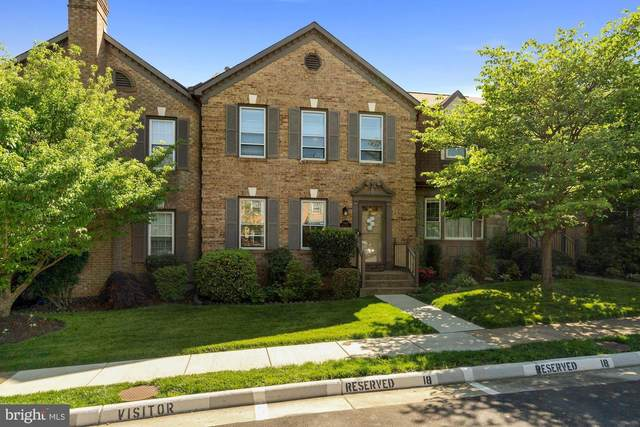 6565 Zoysia Court, ALEXANDRIA, VA 22312 (#VAFX1200704) :: McClain-Williamson Realty, LLC.
