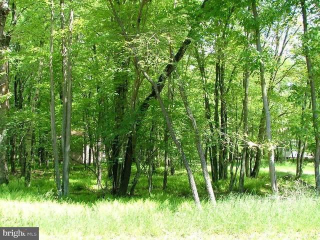 0 Canoe Trail #12, POCONO LAKE, PA 18347 (#PAMR107584) :: Nesbitt Realty