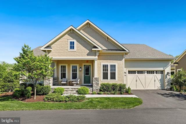 23528 Whiteheart Hickory Lane, ALDIE, VA 20105 (#VALO438330) :: Ram Bala Associates | Keller Williams Realty