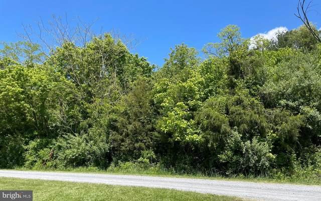 Lot D8 River Valley Road, RILEYVILLE, VA 22650 (#VAPA106234) :: Jennifer Mack Properties