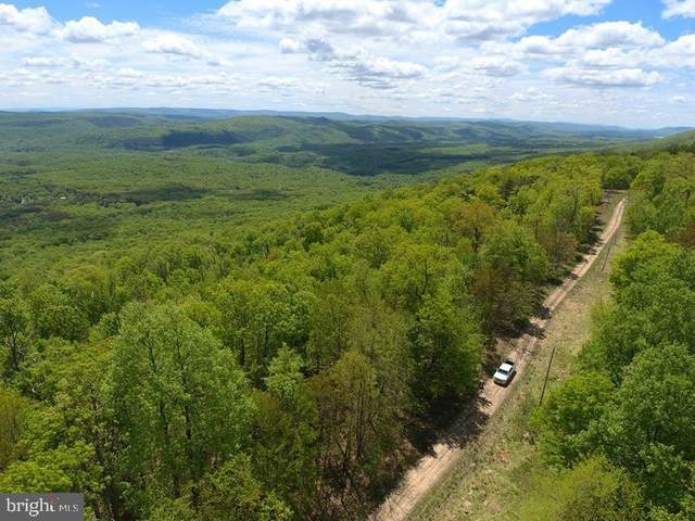 44-A Mountain Top Road, PAW PAW, WV 25434 (#WVHS115676) :: Major Key Realty LLC