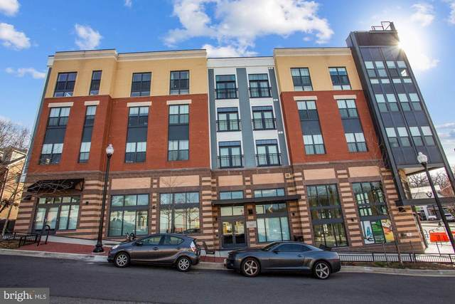989 S Buchanan Street #202, ARLINGTON, VA 22204 (#VAAR181352) :: Keller Williams Realty Centre
