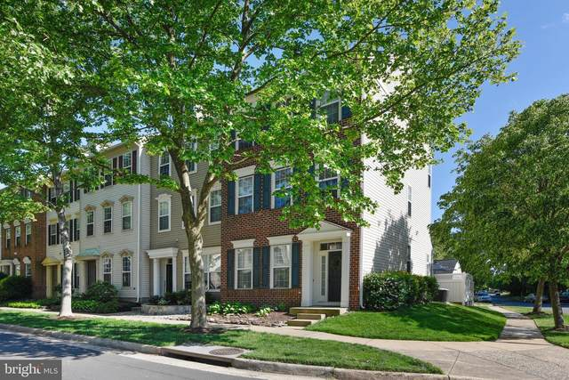 43533 Mink Meadows Street, CHANTILLY, VA 20152 (#VALO438350) :: Peter Knapp Realty Group