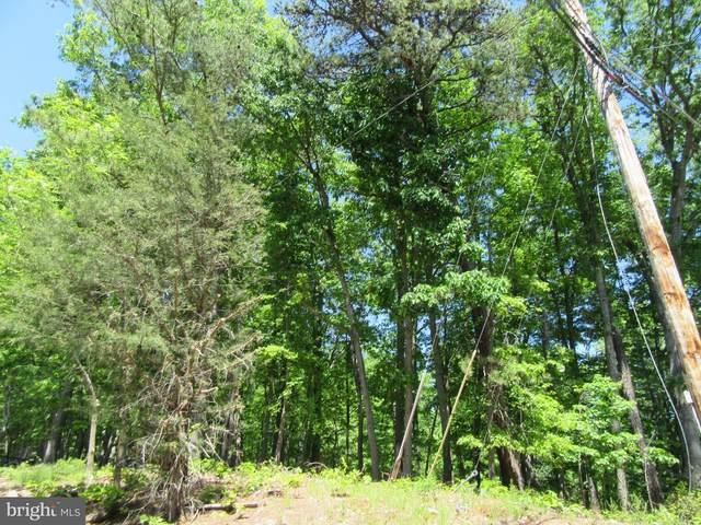 1814 Mountain Road, HAYMARKET, VA 20169 (#VAPW522454) :: A Magnolia Home Team