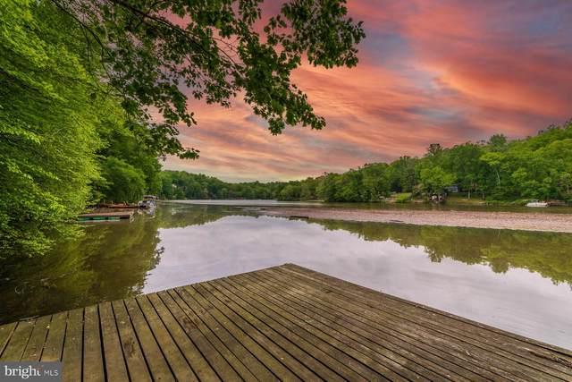 8286 Lake Shore Drive, MANASSAS, VA 20112 (#VAPW522458) :: Keller Williams Realty Centre