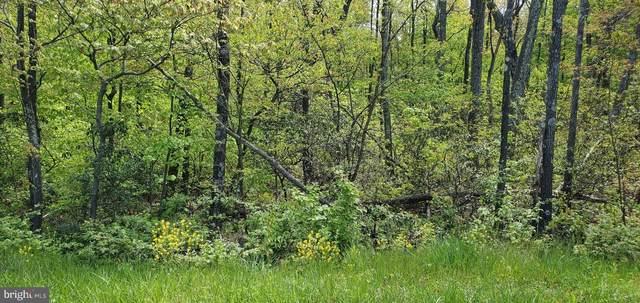 Lot 61A Timber Ridge Trail, WINCHESTER, VA 22602 (#VAFV164060) :: The Matt Lenza Real Estate Team