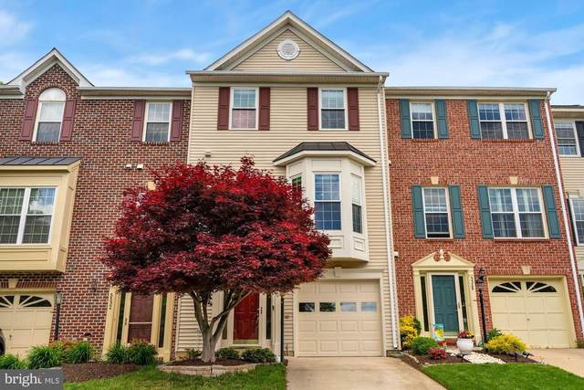 5530 Jowett Court, ALEXANDRIA, VA 22315 (#VAFX1200862) :: Jacobs & Co. Real Estate