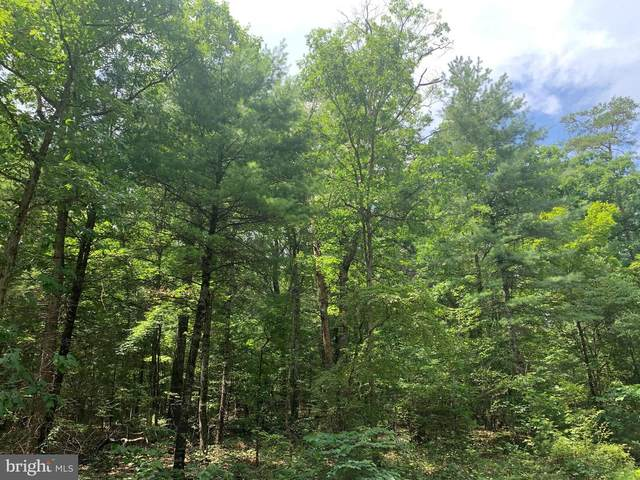 LOT 10 Crooked Run Road, MOUNT JACKSON, VA 22842 (#VASH122254) :: Jacobs & Co. Real Estate