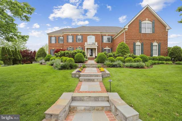 19767 Willowdale Place, ASHBURN, VA 20147 (#VALO438404) :: Peter Knapp Realty Group
