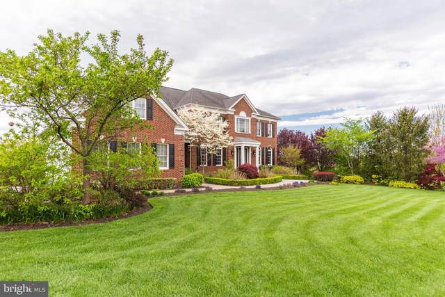 43135 Meadow Grove Drive, ASHBURN, VA 20147 (#VALO438410) :: Peter Knapp Realty Group