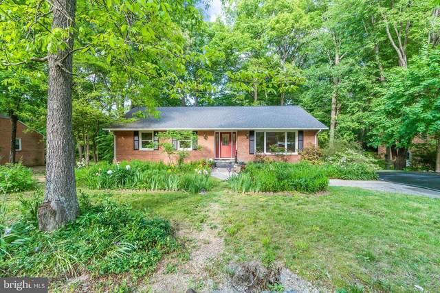 217 N Randolph Road, FREDERICKSBURG, VA 22405 (#VAST232374) :: The Matt Lenza Real Estate Team