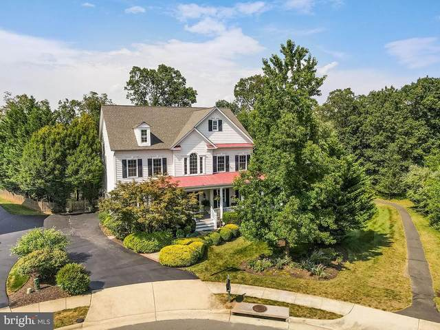 18307 Cattail Branch Court, LEESBURG, VA 20176 (#VALO438476) :: New Home Team of Maryland