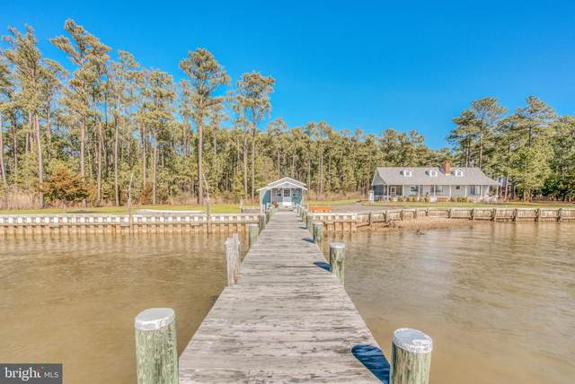 5448 Casson Neck Road, CAMBRIDGE, MD 21613 (MLS #MDDO127402) :: Maryland Shore Living | Benson & Mangold Real Estate