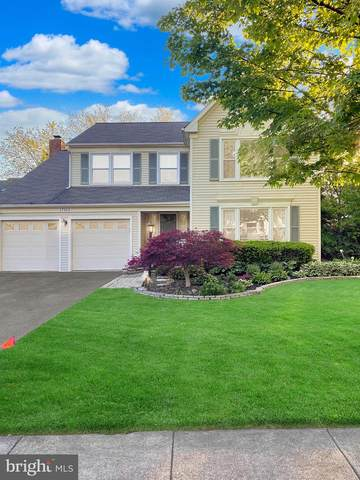 17313 Pickwick Drive, PURCELLVILLE, VA 20132 (#VALO438486) :: Peter Knapp Realty Group