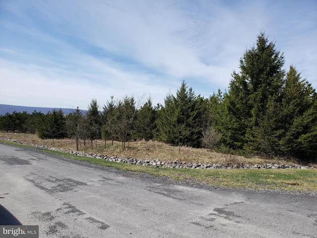 12410 Summit Circle, FROSTBURG, MD 21532 (#MDAL136988) :: ExecuHome Realty
