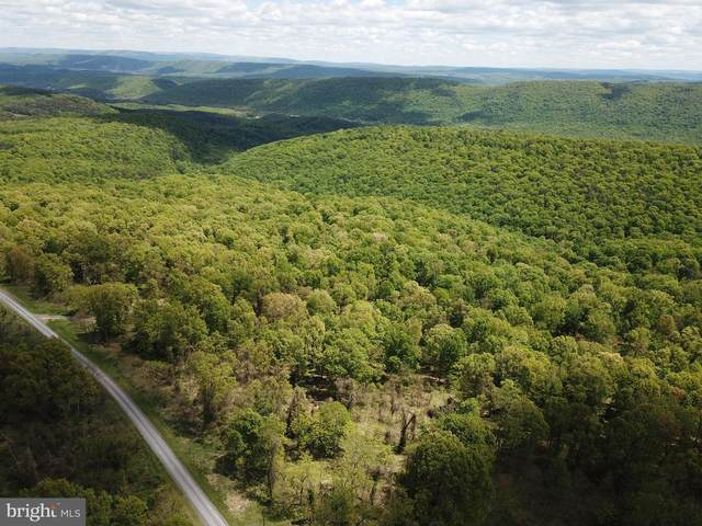 LOT 198 Graces Cabin Rd, SPRINGFIELD, WV 26763 (#WVHS115680) :: Jim Bass Group of Real Estate Teams, LLC