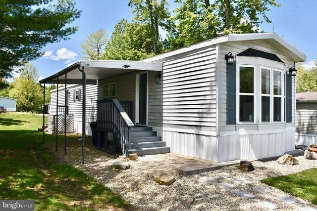 187 Faith Drive, NEW RINGGOLD, PA 17960 (#PASK135334) :: The Joy Daniels Real Estate Group