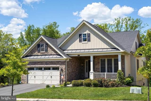 13828 Long Ridge Drive, GAINESVILLE, VA 20155 (#VAPW522632) :: RE/MAX Cornerstone Realty