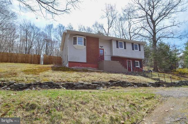 439 Blue Sutters Road, ROARING BROOK TWP, PA 18444 (#PALW100100) :: ExecuHome Realty