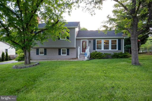 119 Shenandoah Lane, STAFFORD, VA 22554 (#VAST232434) :: RE/MAX Cornerstone Realty