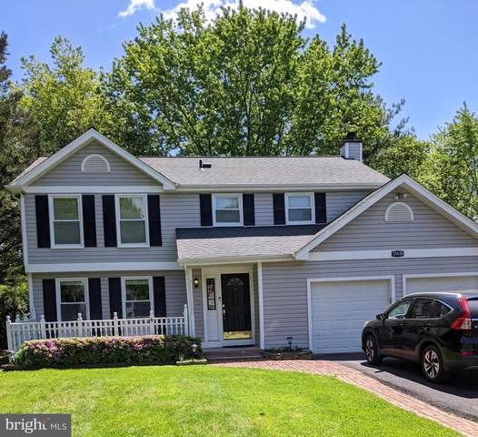13426 Hidden Meadow Court, HERNDON, VA 20171 (#VAFX1201426) :: Great Falls Great Homes