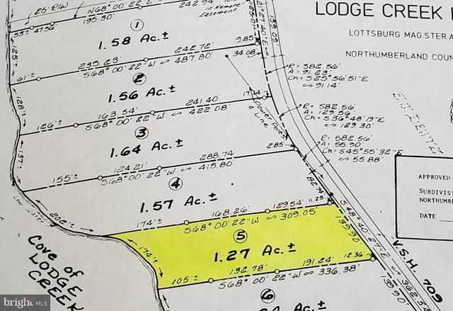 0 Chambers Lane, LOTTSBURG, VA 22511 (#VANV101814) :: The Redux Group