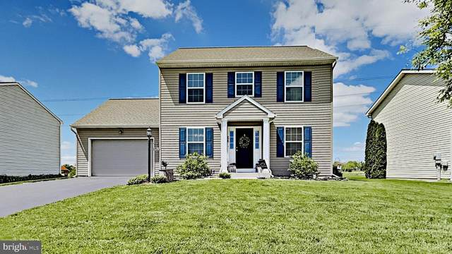 228 Cypress, BAINBRIDGE, PA 17502 (#PALA182234) :: Iron Valley Real Estate