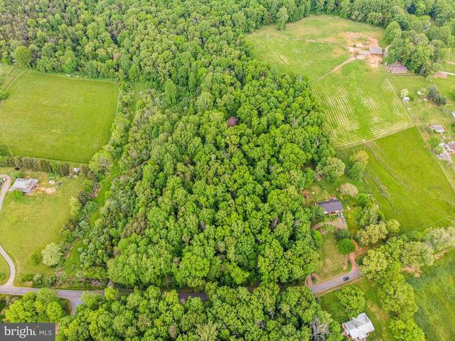 16641 Oak Shade Road, RIXEYVILLE, VA 22737 (#VACU144516) :: The Sky Group