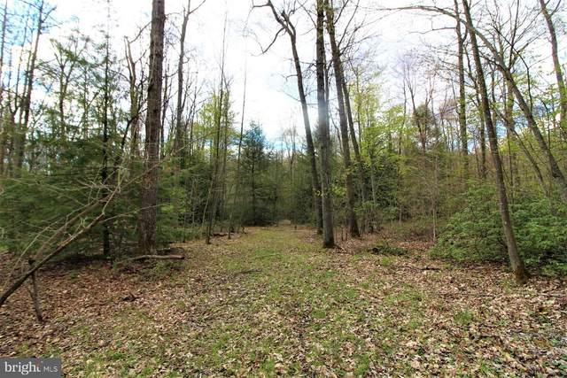 Lot 13 Limpopo Lane, MC HENRY, MD 21541 (#MDGA135178) :: ExecuHome Realty