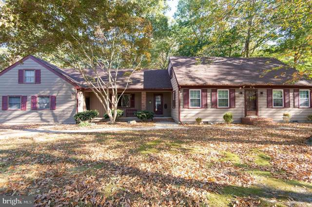 3318 Landrum Drive, EAST NEW MARKET, MD 21631 (#MDDO127422) :: RE/MAX Coast and Country