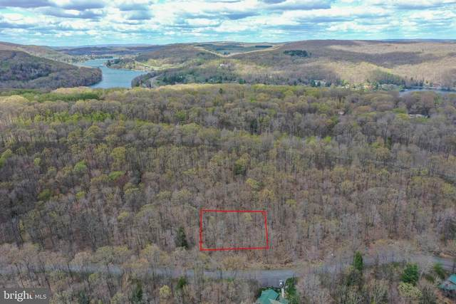 71 Tree Top Way, OAKLAND, MD 21550 (#MDGA135184) :: ExecuHome Realty