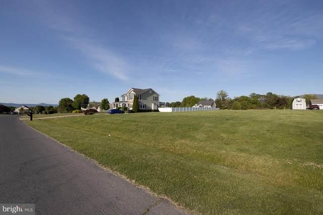 0 Deerfield Estates Dr, STANLEY, VA 22851 (#VAPA106254) :: Pearson Smith Realty