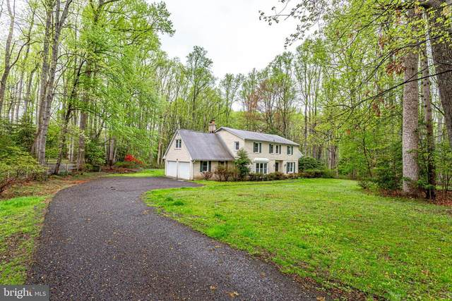 508 Haven Lane, GREAT FALLS, VA 22066 (#VAFX1201934) :: Pearson Smith Realty
