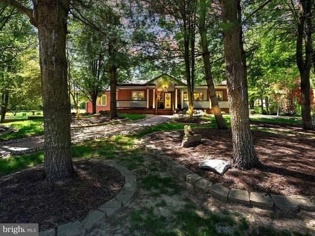 1206 Parkside Drive South, READING, PA 19611 (#PABK377696) :: Keller Williams Real Estate