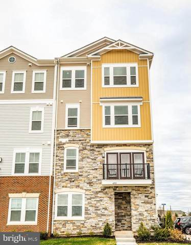 41993 White Mills Terrace, ALDIE, VA 20105 (#VALO438800) :: RE/MAX Advantage Realty