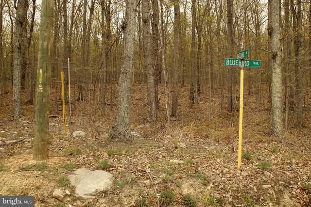 501 Bluebird Trail, WINCHESTER, VA 22602 (#VAFV164174) :: Pearson Smith Realty