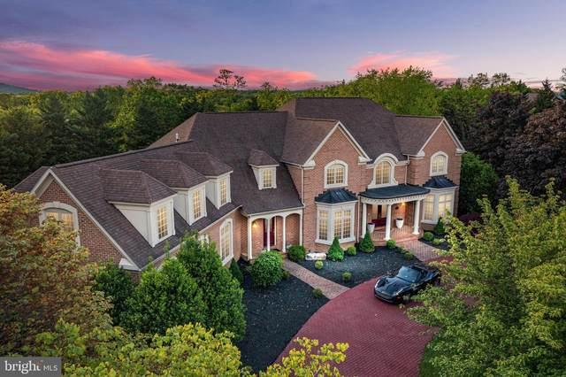 WINCHESTER, VA 22601 :: The Riffle Group of Keller Williams Select Realtors