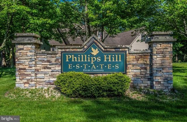 704 Phillips Hill Drive, MILLSBORO, DE 19966 (#DESU183340) :: Shamrock Realty Group, Inc