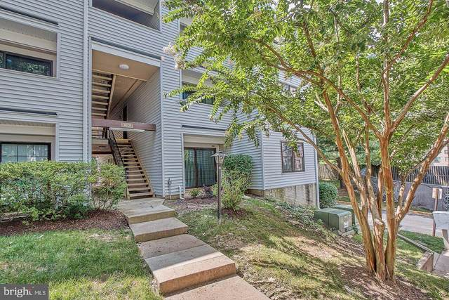 1603 Carriage House Terrace E, SILVER SPRING, MD 20904 (#MDMC759180) :: The Miller Team