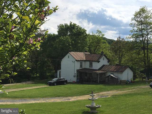 1825 Fiery Run Road, LINDEN, VA 22642 (#VAWR143704) :: The Miller Team