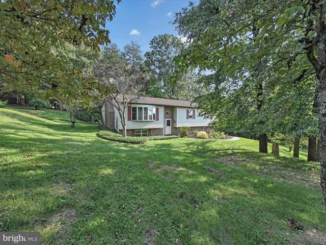 159 Oak Terrace Drive, BIRDSBORO, PA 19508 (#PABK377810) :: Ramus Realty Group