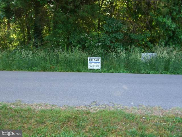 29776 Wilson Road, MECHANICSVILLE, MD 20659 (MLS #MDSM176402) :: PORTERPLUS REALTY