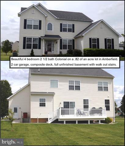 31 Durham Court, FALLING WATERS, WV 25419 (#WVBE186166) :: LoCoMusings