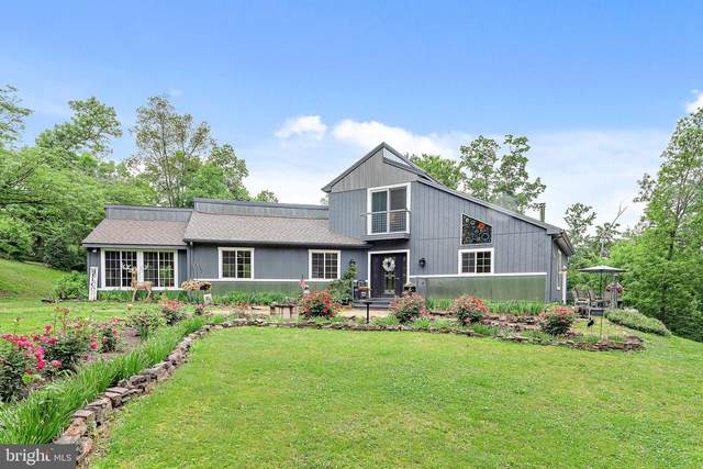 916 Stahl Hill Road, PORT TREVORTON, PA 17864 (#PASY100300) :: The Joy Daniels Real Estate Group