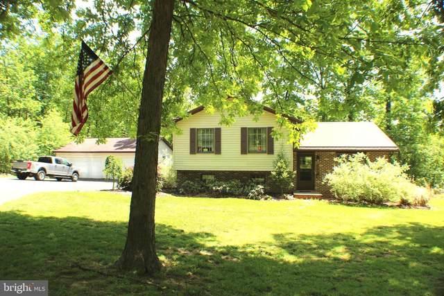 181 Bishop Pine Drive, MAYSVILLE, WV 26833 (#WVGT103486) :: AJ Team Realty