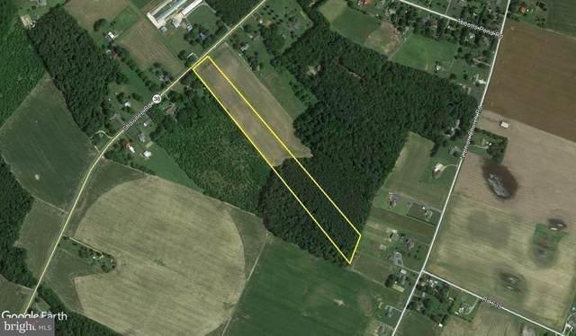10 Acres Shawnee Road, MILFORD, DE 19963 (#DESU183430) :: CoastLine Realty