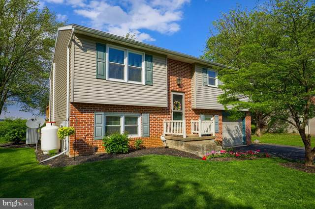 35 Allen Road, EPHRATA, PA 17522 (#PALA182506) :: TeamPete Realty Services, Inc