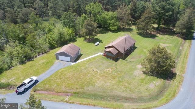 4918 Lee Terrace, WOOLFORD, MD 21677 (#MDDO127458) :: Dawn Wolf Team