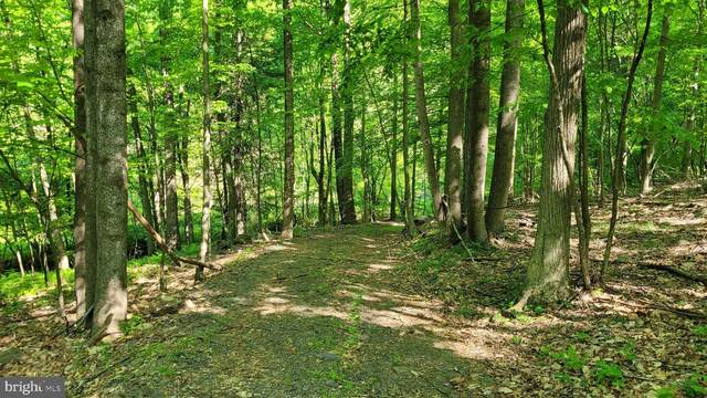 Grahams Woods Road, NEWVILLE, PA 17241 (#PACB135092) :: The Heather Neidlinger Team With Berkshire Hathaway HomeServices Homesale Realty